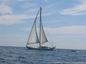 Sailboat we met along the way.